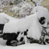 Bike winterfest machen – so startet das Motorrad fit in den Frühling