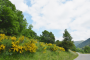 Die Pässe der Pyrenäen – Eldorado für erlebnishungrige Kurvenhelden